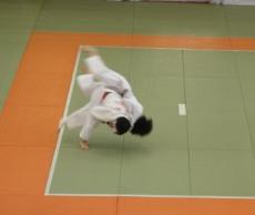 judodsf